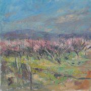 blossom_afternoon_light_mary_jane_alexander