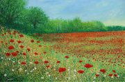 Chris Bourne Poppies original floral meadow painting for sale