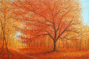 Chris Bourne Autumn IV original woodland painting for sale