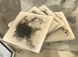 Kaby Bitten Coasters abstract grey glass coasters for sale