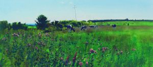 Richard Thorn The Long Afternoon meadow painting for sale
