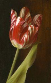 Tanja Möderscheim Zilver Standaard Heritage Tulip I traditional dutch tulip art for sale