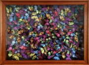 Daniel Byrne Liberty Chaos framed butterfly wall art for sale