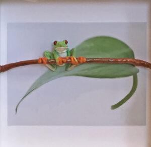 Natalie Staniforth Balance frog sculpture animal artwork