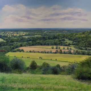 Grace Ellen Summer Glow Surrey Hills landscape art for sale