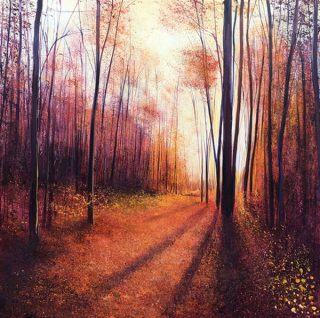 John Connolly Autumn Shadows woodland painting for sale
