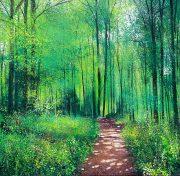 Woodland Walk John Connolly