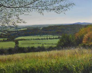 Grace Ellen Autumn Glow Box Hill local surrey painting for sale