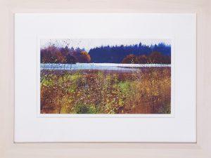 Stover Park Richard Thorn framed