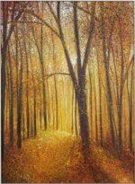 Autumn Walk John Connolly