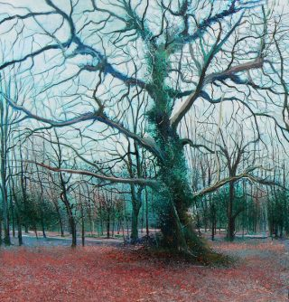 John Connolly Winterwoods wintry woodland painting for sale