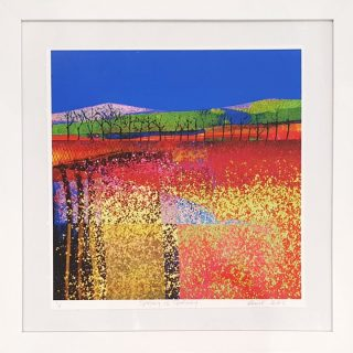 Elaine Coles Spring Is Spring framed colourful abstract meadow