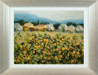 Hazel Barker Lemon Trees Tuscany framed