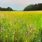 Buttercup fields John Connolly 40x40 painting