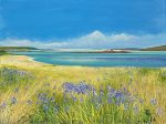 John Connolly SCILLY AGAPANTHUS BLUE beach painting