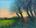 Stockley Sunset John Connolly tree silhouette sunset
