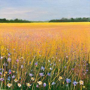 Warm Summer Colours landscape